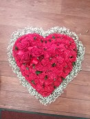 red carnation gypsy heart