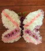pink and white mini butterfly
